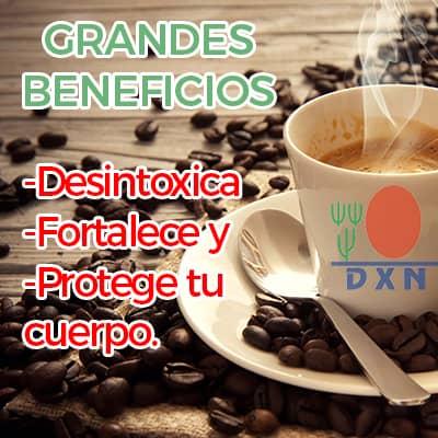 cafe dxn beneficios