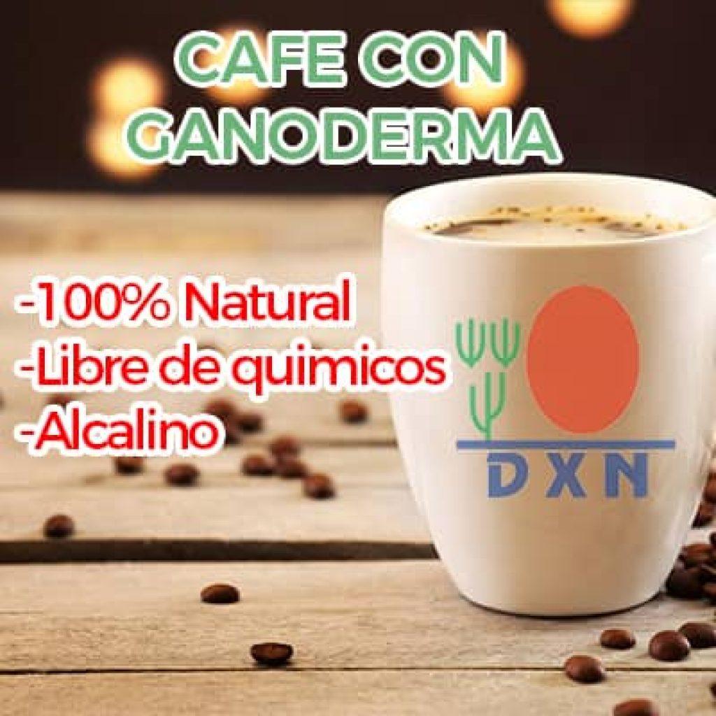 cafe dxn que es