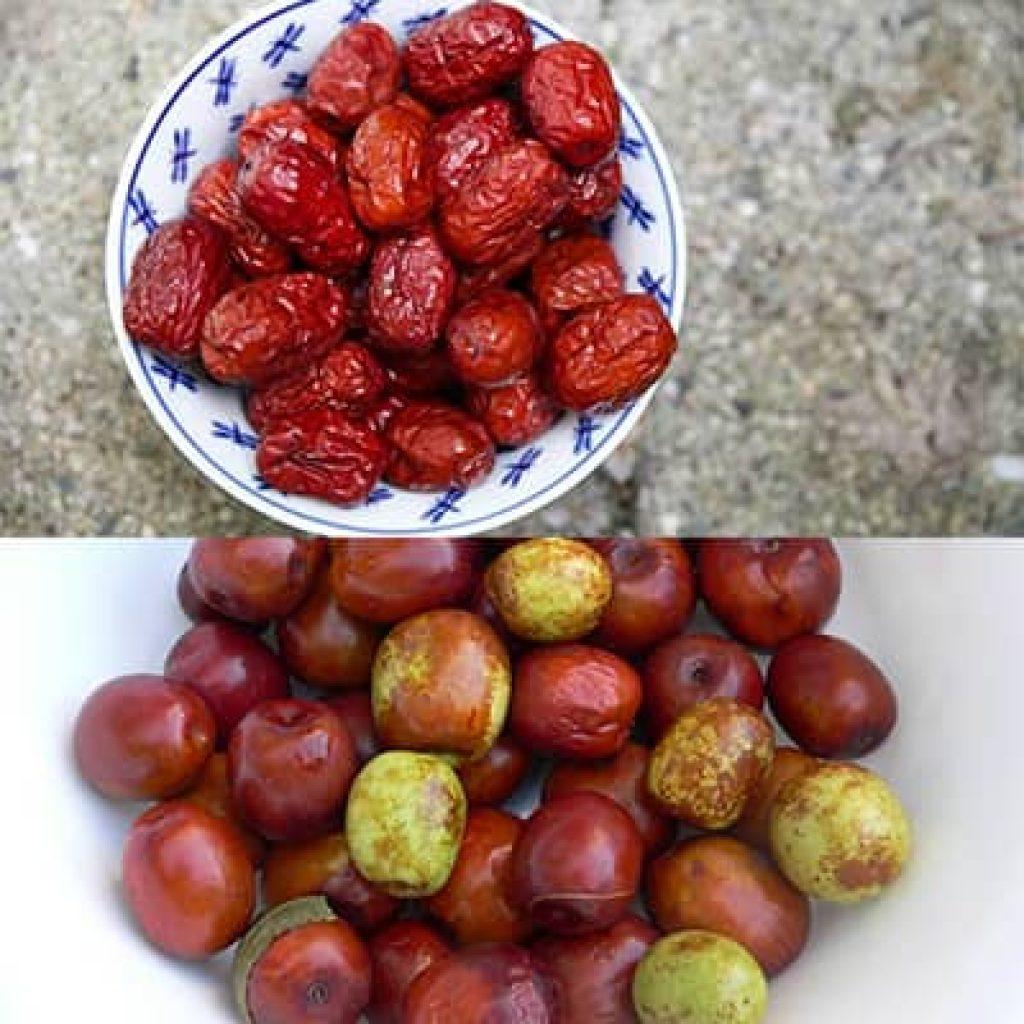 jujube fruits que es